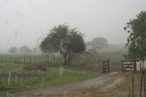 chuva-300x200